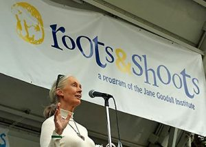Dr. Jane Goodall Roots and Shoots JGI Schweiz