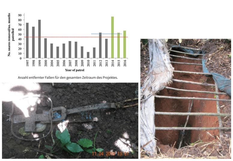 Trittfalle aus Metall mit gespannten Schlagbügeln (links), und Grubenfalle für Elefanten (rechts).