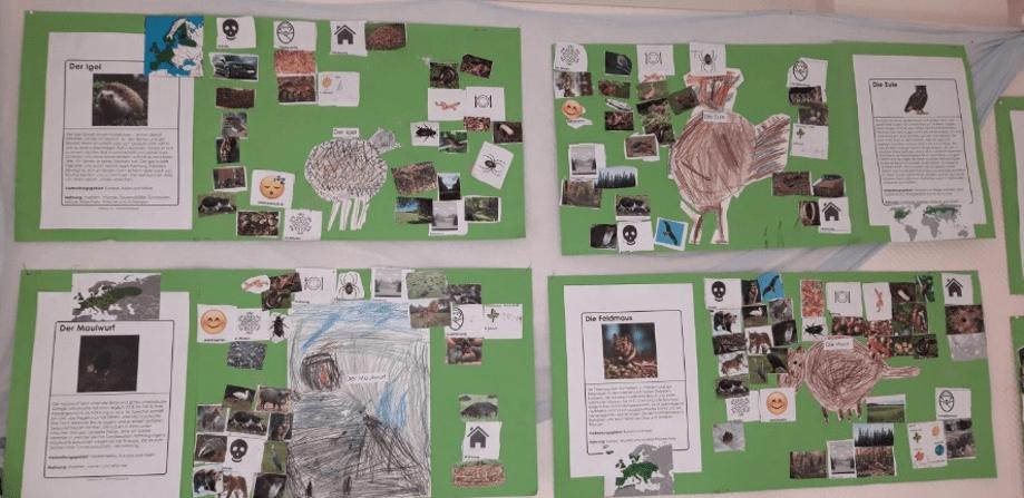 Der Kindergarten Alte Post in Ermatingen nahm mit einer tollen Aktion am Tag des Waldes 2019 teil.