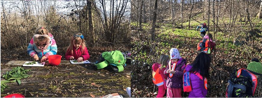 Die Kinder der Kindergarten Promenade 2 in Bad Zurzach haben den Tag des Waldes 2019 natürlich im Wald verbracht.
