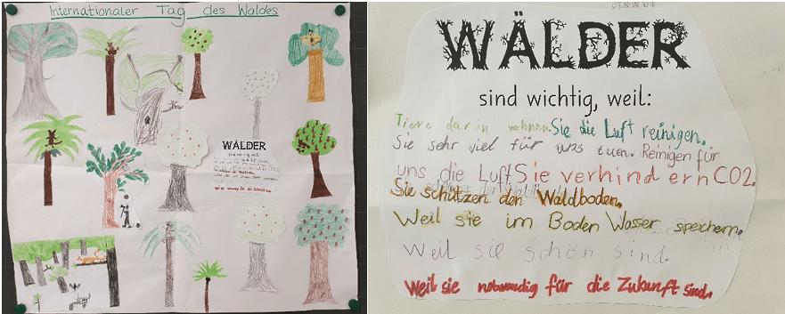 Die Kinder der 3. Klasse des Schulhauses Töss in Richterswil haben zum Tag des Waldes die Wichtigkeit des Waldes besprochen und ein tolles Gemeinschaftsbild zum Thema Wald erstellt