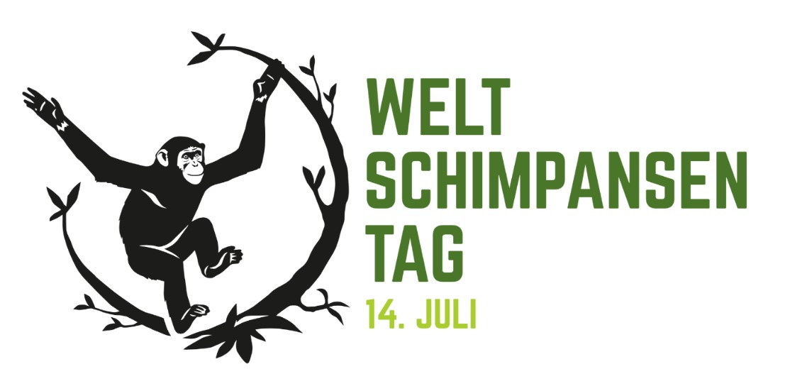 Weltschimpansentag JGI Schweiz