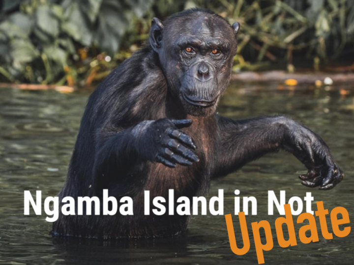Ngamba Island in Not – Update