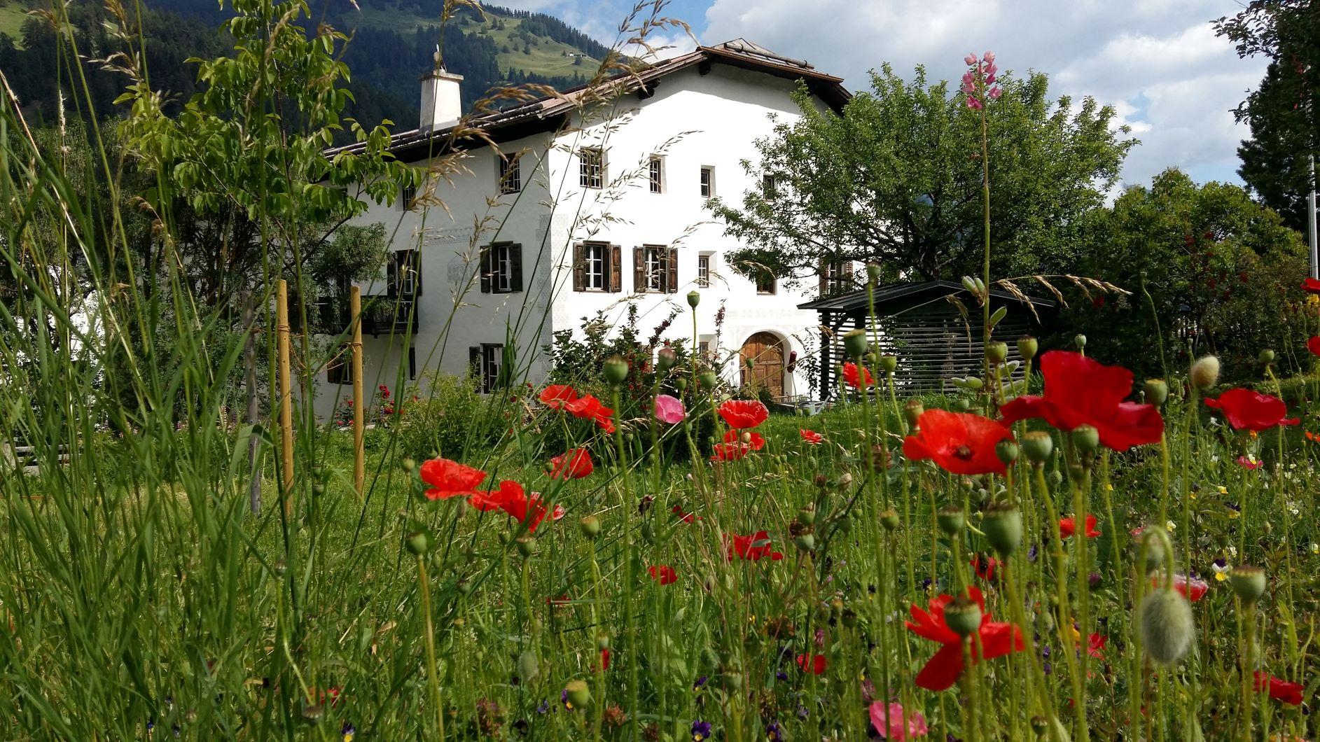 Silent Auction JGI Schweiz